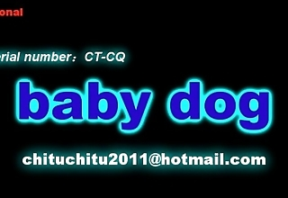 Chitu - coddle dog subjugation